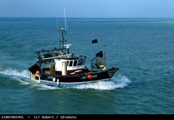 Joint Workshop EEA-EC DG Fisheries